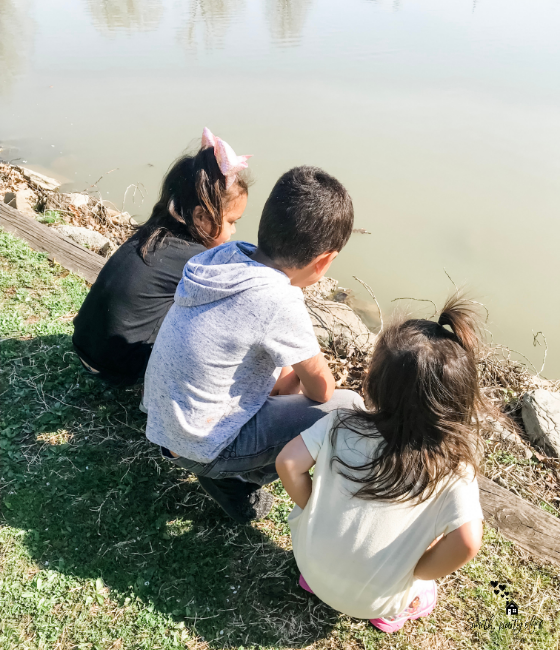 My kids at the pond, spending quality time.