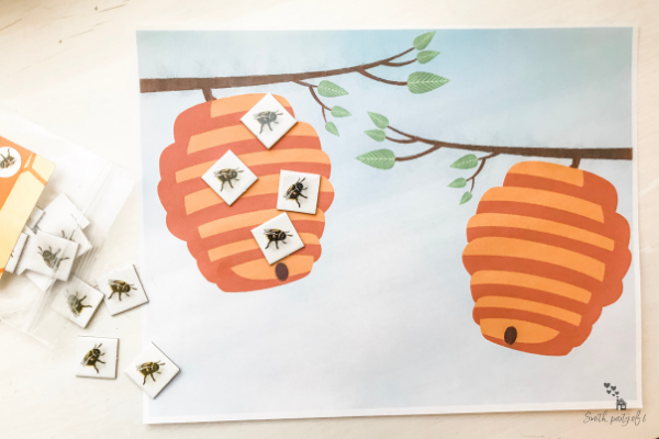 Bee Hive Counting -- One-to-One Correspondence