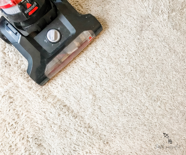 Vacuuming Rug -- Get Motivated to Clean