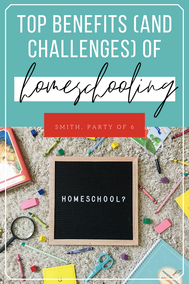 The Benefits of Homeschooling (and the Challenges) : Pros and Cons of Homeschooling Your Kids